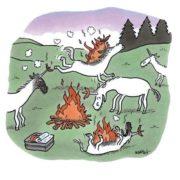 Unicorn BBQ party