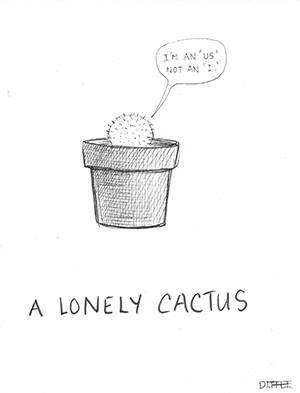 A lonely cactus