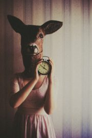 Deer with vintage alarm clock