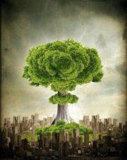 Eco – Bomb