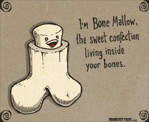 I'm bone mallow