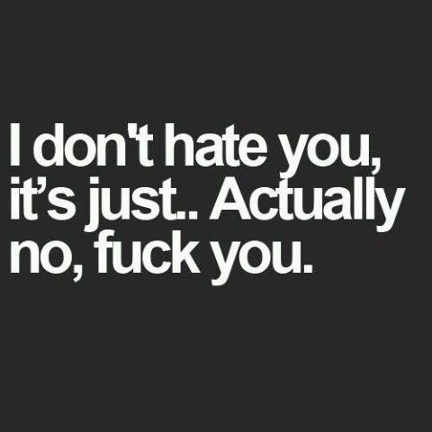 I don't hate you, it's just. Actually no, fuck you.