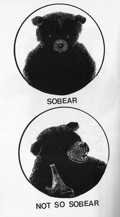 Sobear. Not so sobear.