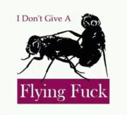 I don't give a flying fuck