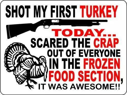 Shot my first turkey