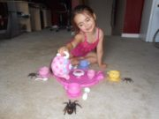 Tea party with spiders