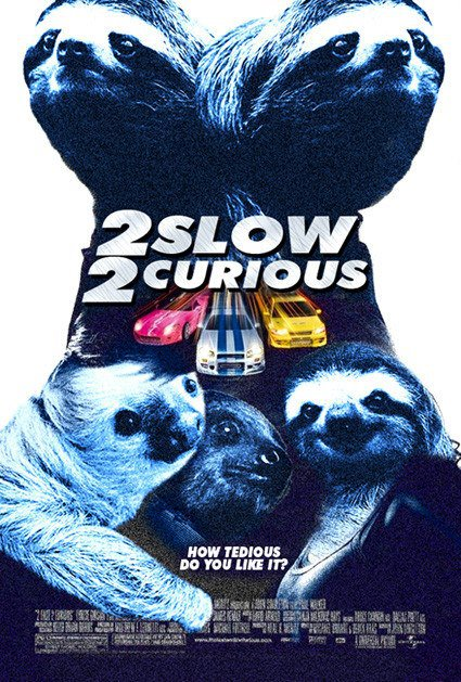 2 slow 2 curious