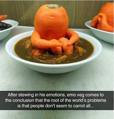 Emo veg conclusion