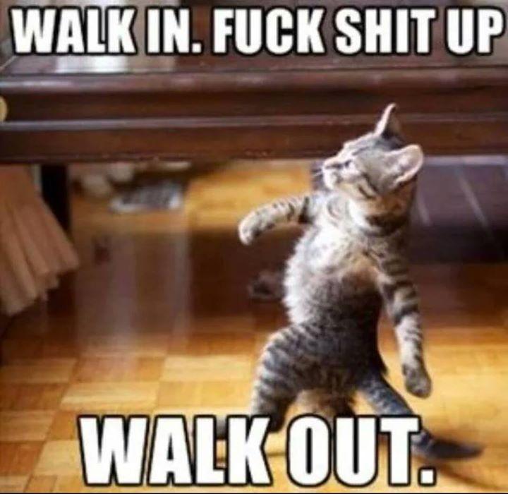 Walk in. Walk out.