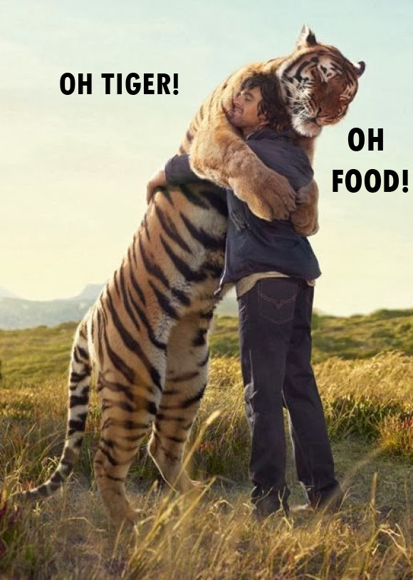 Oh Tiger! Oh Food!