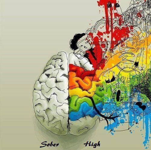 Sober vs high