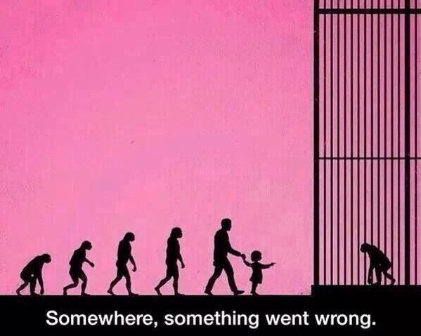 Somewhere, something went wrong.