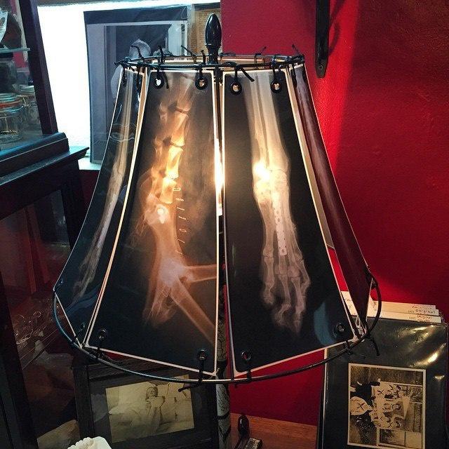 X-Ray Lampshade