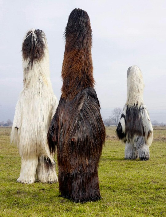 Bulgarian men in babugeri costumes, used for pagan rituals