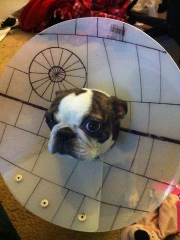 Death star cone of shame