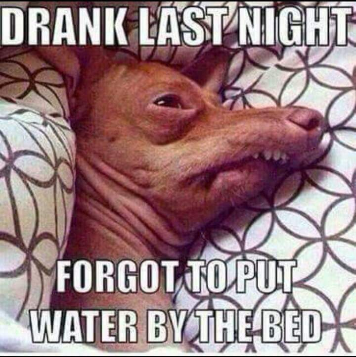 Drank last night. Forgot to put water by the bed.