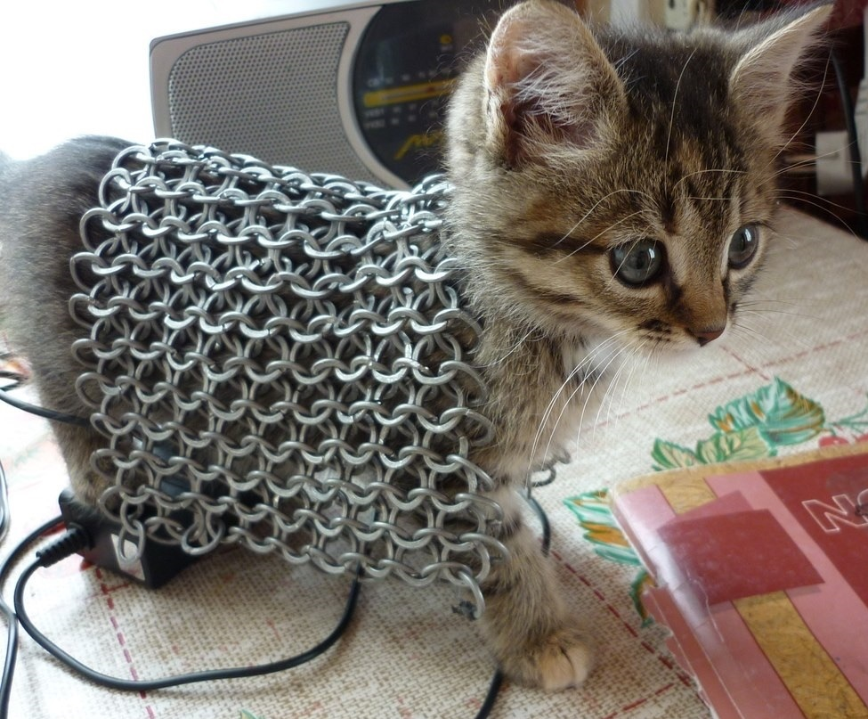 Kitten chain mail
