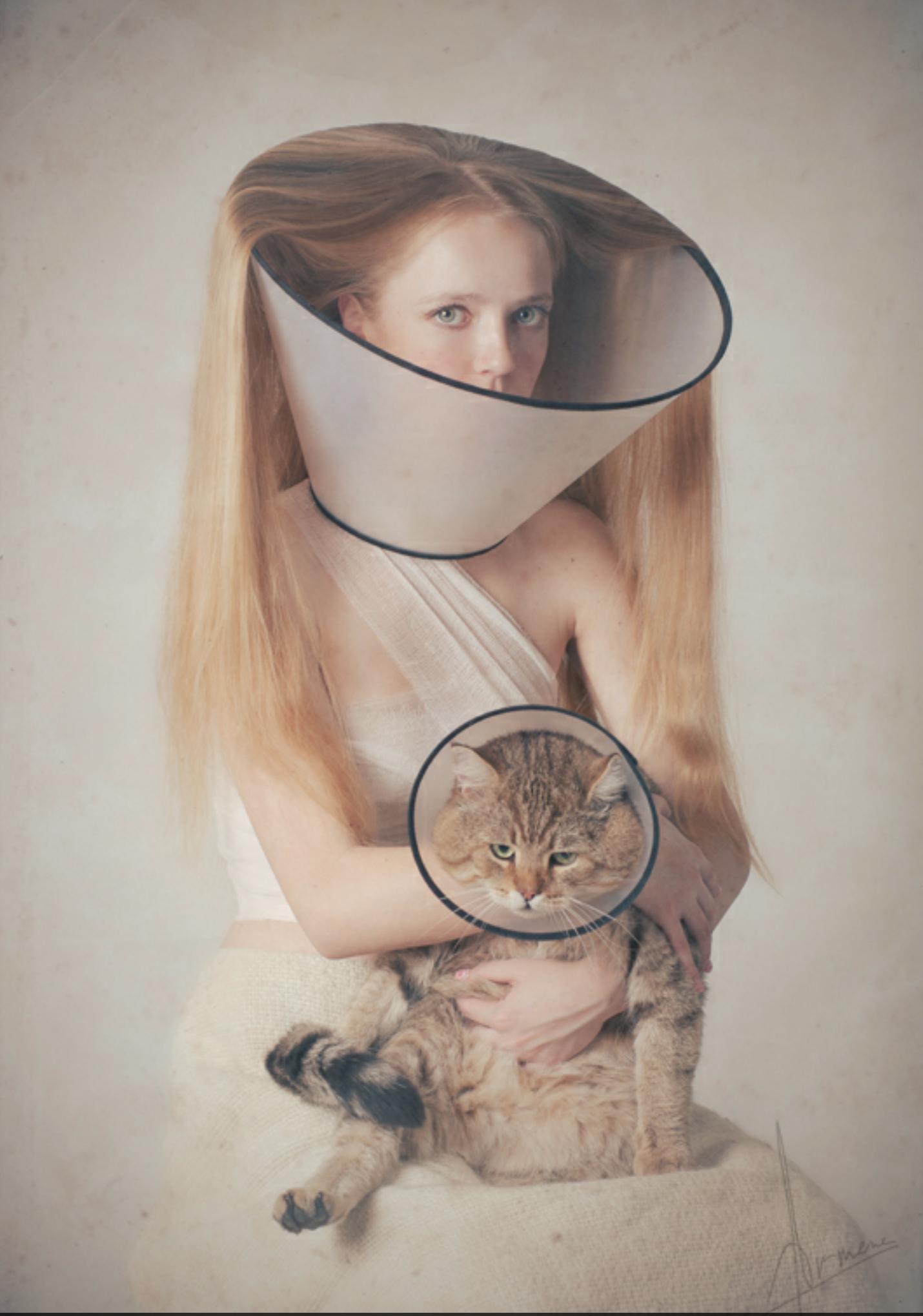 Veterinary Inspired Fashions