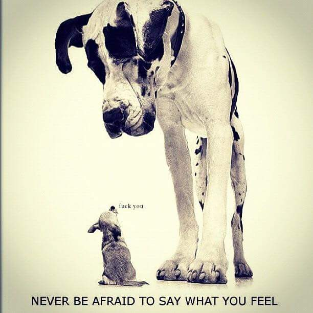 Never be afraid to say what you feel