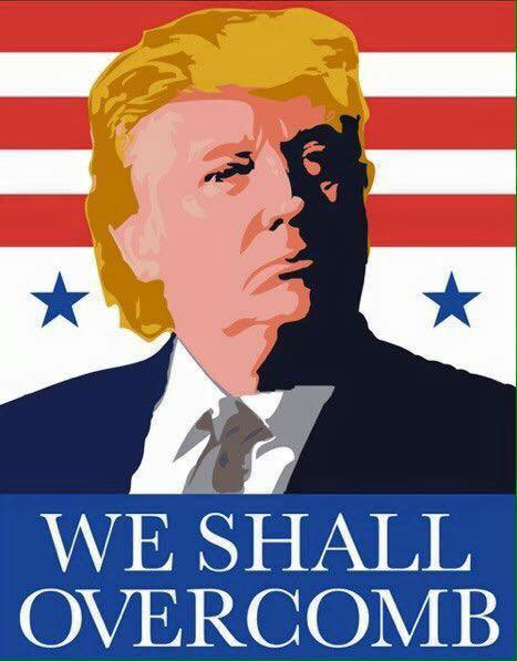 We shall overcomb!