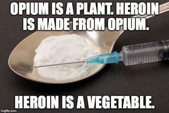 Heroin is a vegetable