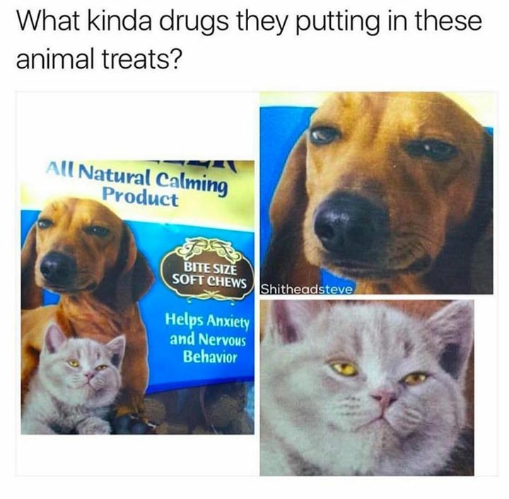Pet calming product