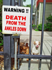 Warning! Death from the ankles down