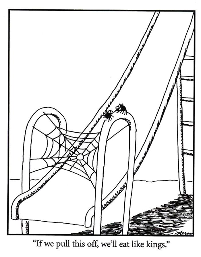 Web trap
