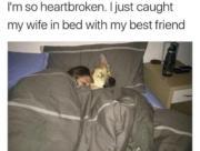 Caught my wife…