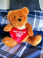 Sweet Valentine's teddy bear