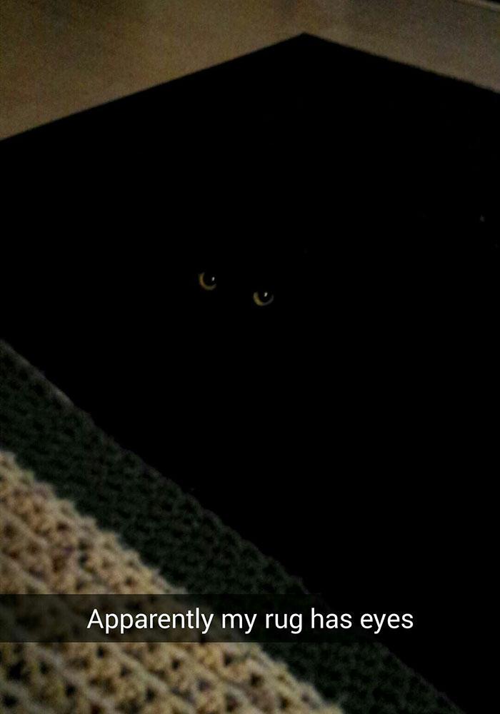 Apparently my rug has eyes