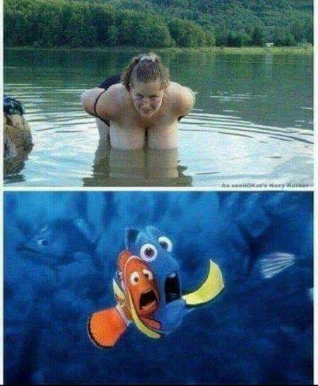 How to scare fishes