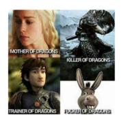 #s of dragons