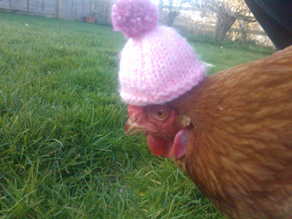 Don't mind me, I'm just keeping my cock warm.