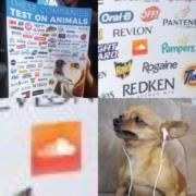 These companies test on animals!