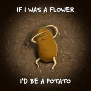 If I was a flower…