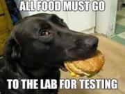 All food must go to the lab for test