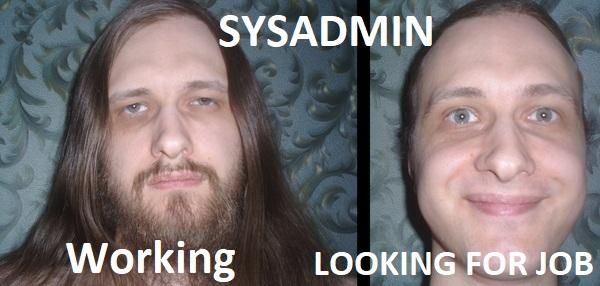 Sysadmin working vs looking for job