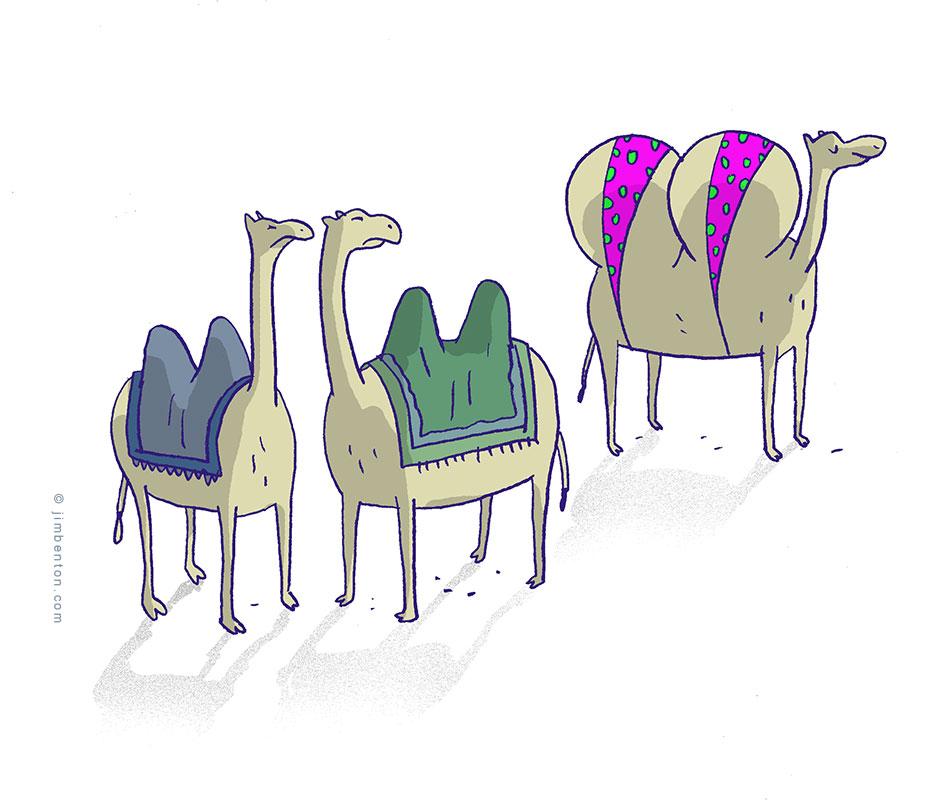 Camel hump job