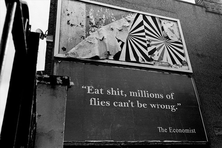 Eat shit, millions of flies can't be wrong.