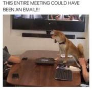 This entire meeting could have been an email!!!!
