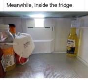 Meanwhile, inside the fridge