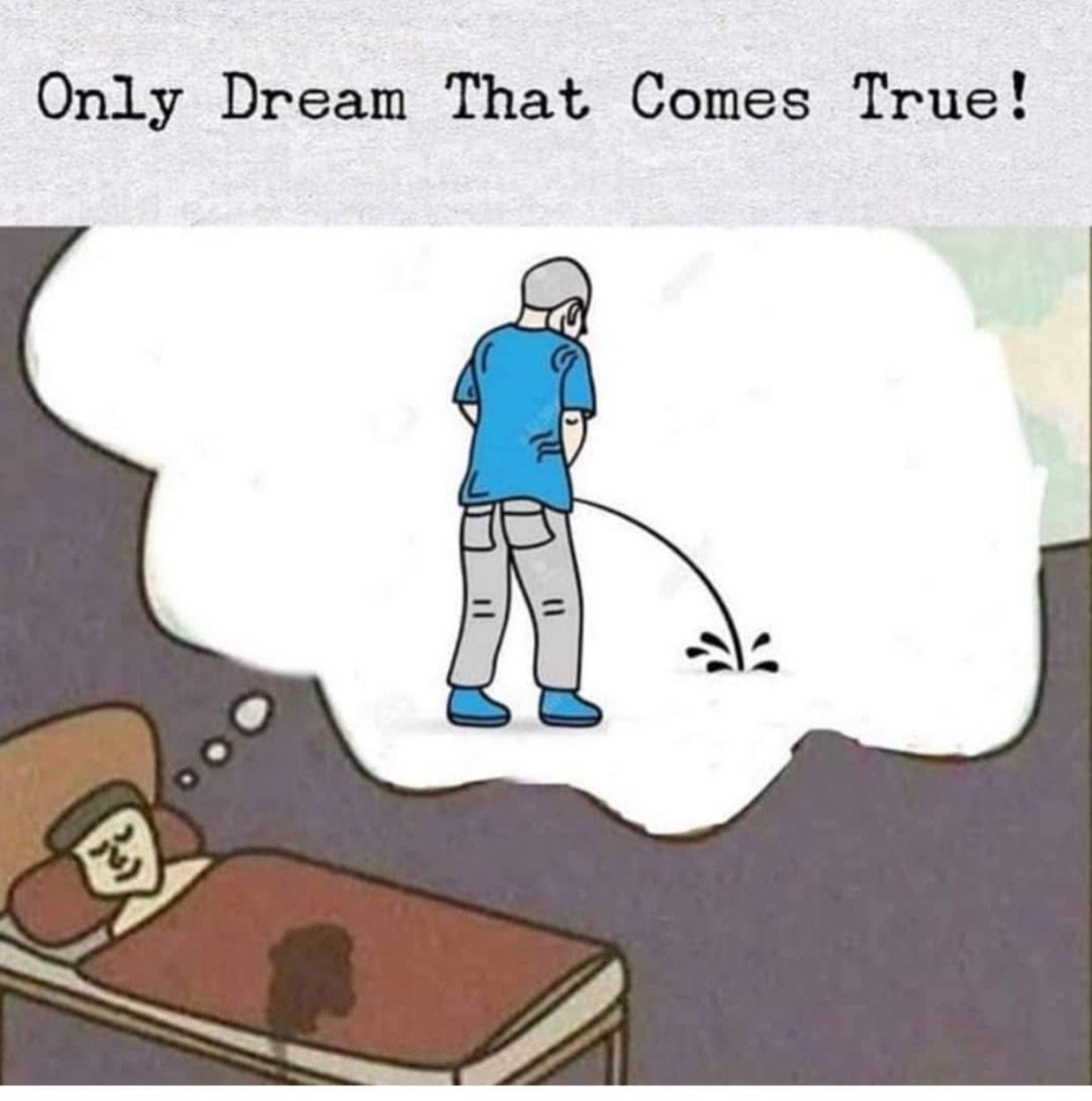 Only dream that comes true