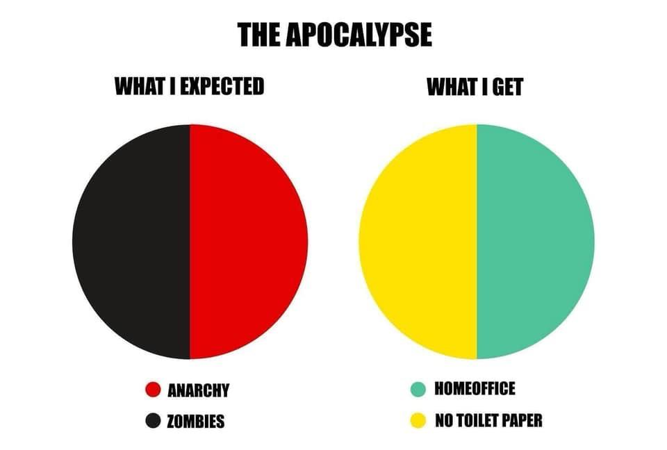 The apocalypse expectations vs reality