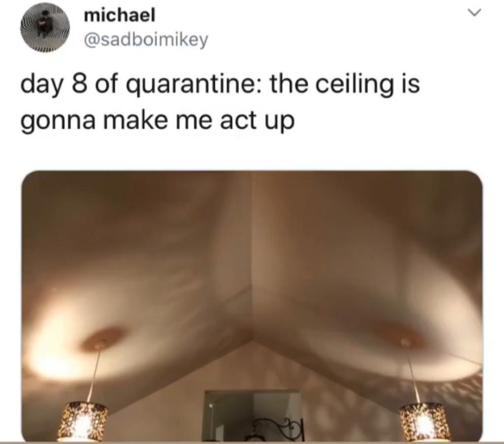 Day 8 of quarantine…the ceiling is gonna make me act up