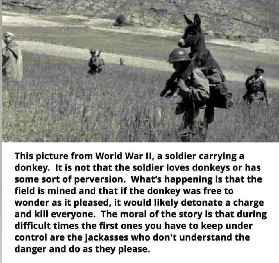 During difficult times the first ones you have to keep under control are the jackasses