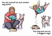 How your dog sees you