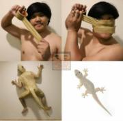 Human gecko cosplay
