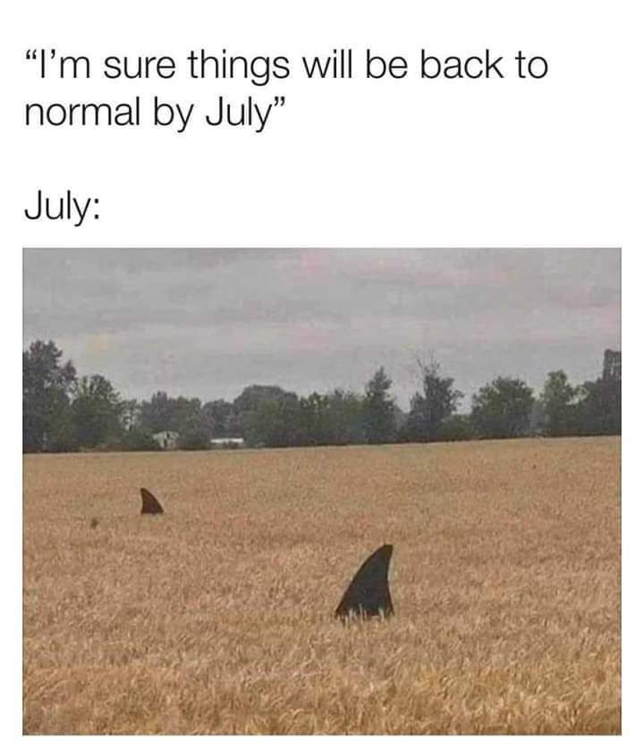 How's things in July