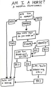 A helpful flow chart – Am I a horse